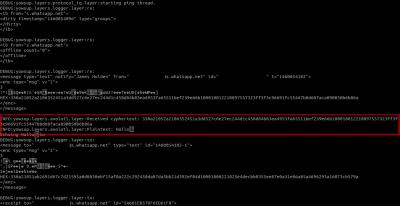 Das Python-Tool yowsup gibt uns die Möglichkeit den eingehenden Text (verschlüsselt) und das von der Axolotl-Bibliothek entschlüsselte Ergebnis (Plaintext) zu überprüfen.
