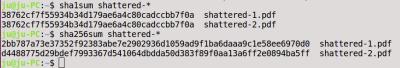 Die beiden oben dargestellten PDF-Dateien ergeben tatsächlich den gleichen SHA1-Wert; bei SHA256 unterscheiden sie sich jedoch.